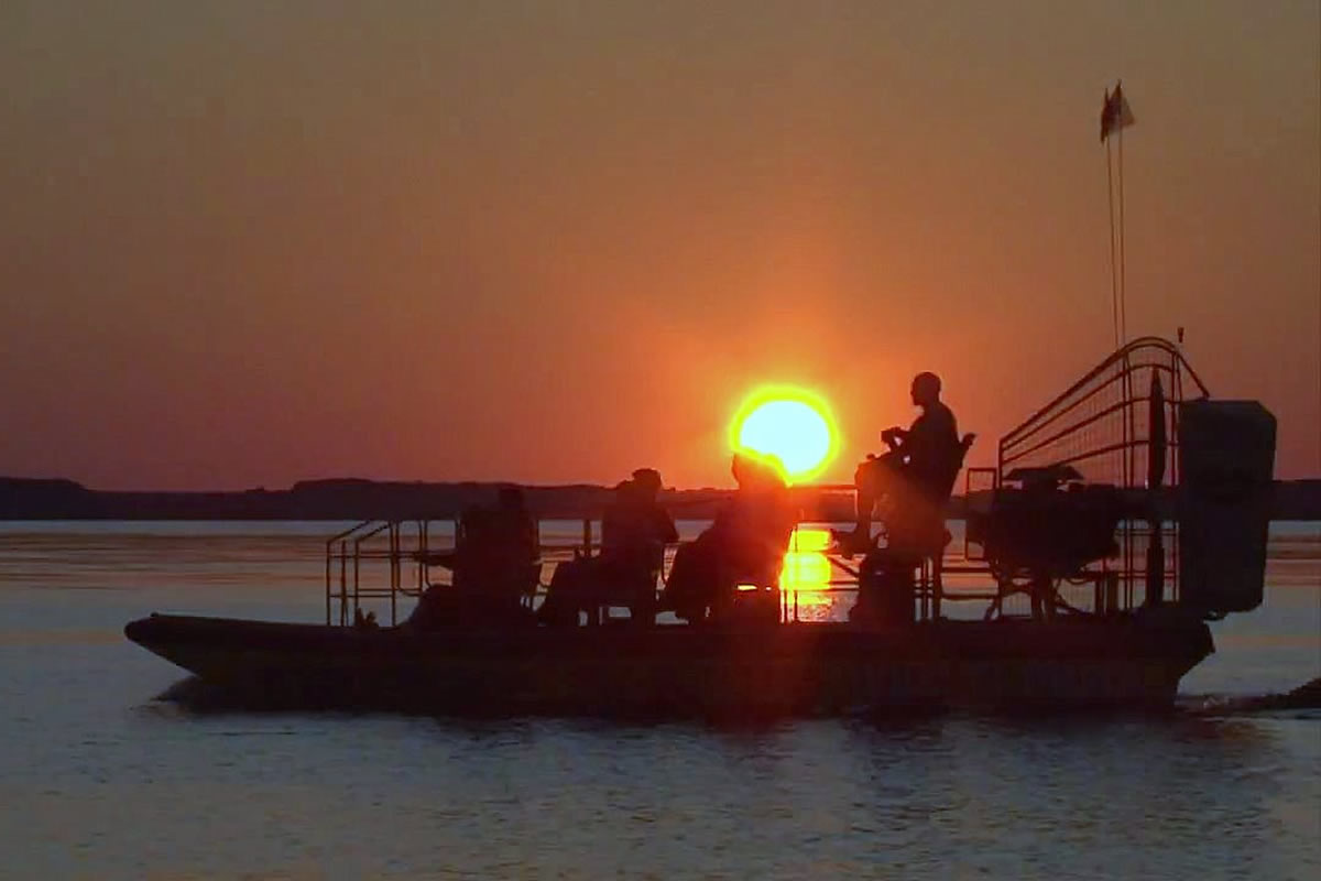 Why You Should Go on an Airboat Ride at Night