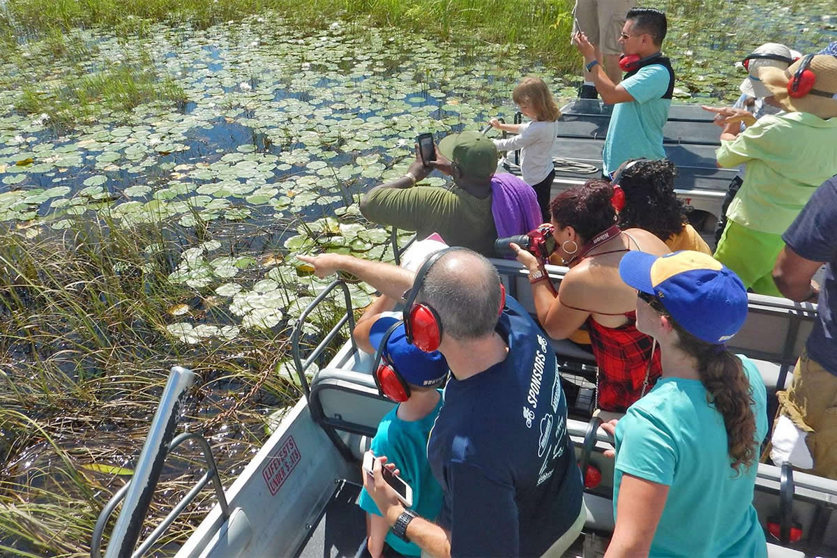 Why You Should Visit the Florida Swamps