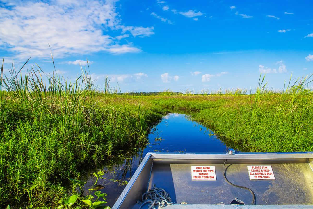 Four Types of Airboat Tours We Offer