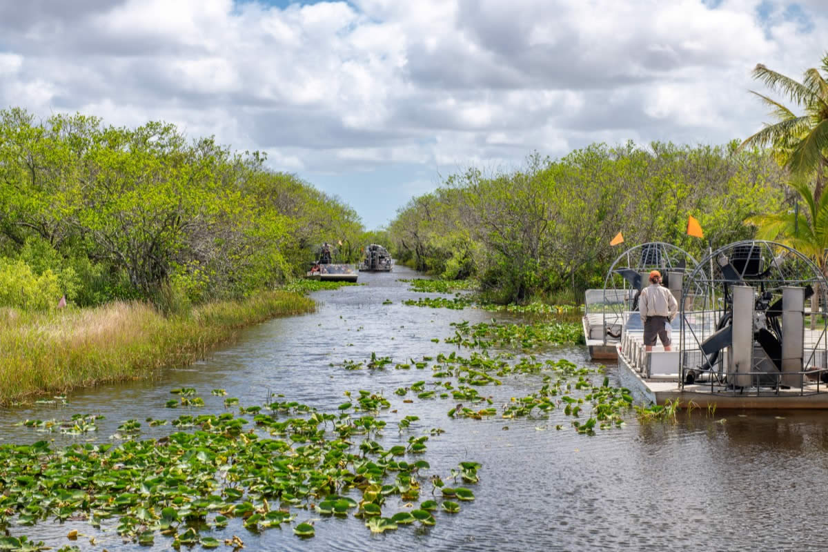 Five Reasons to Go on an Airboat Ride through the Florida Everglades