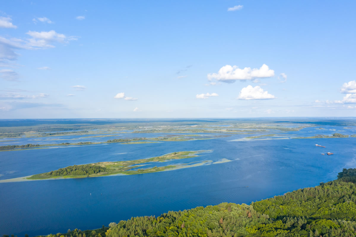 Five Reasons You Should Visit the Florida Everglades